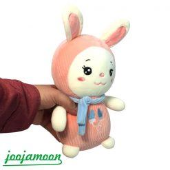عروسک خرگوش لباس رنگ