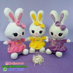 خرگوش پاپیون دار sweet